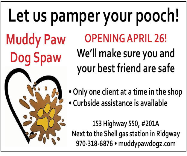 Let us pamper your pooch!
