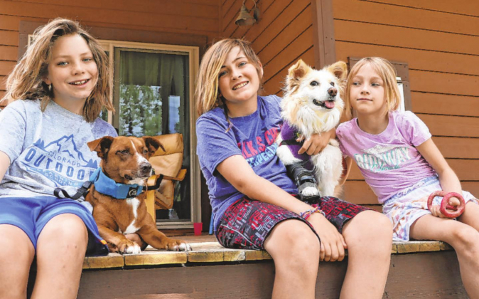 From left, Braeden Jenkins and Kizzy, Sunny Wick with Angel and Dory Wick all sit together in their River Park neighborhood. The kids formed Don't Hurt Dogs after learning about Angel's survival story and will have their short film featured in the Bow Wow Film Festival. Erin McIntyre— ourayCounty Plaindealer