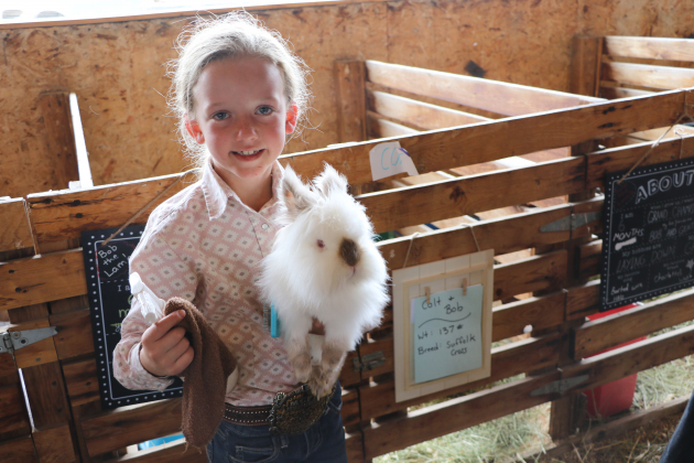 Braidy Goode, 7, of Montrose is in Cloverbuds and brought her Lionhead rabbit, Snowflake, to the Ouray County Fair. Plaindealer photo by Erin McIntyre