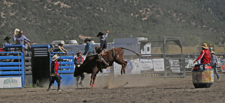 The 2019 Ouray County Rodeo bull riding competition drew more than 1,0000 spectators and competitors from across the region.
